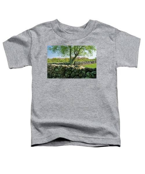 Stone Wall In Rhode Island Toddler T-Shirt
