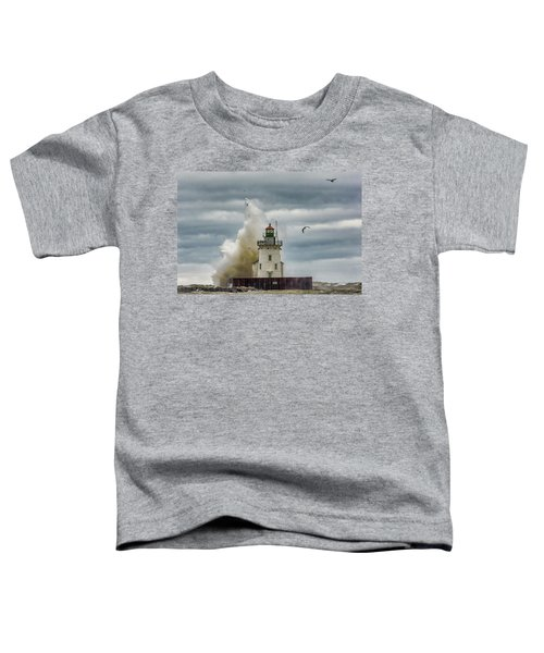 Storm On Lake Erie Toddler T-Shirt