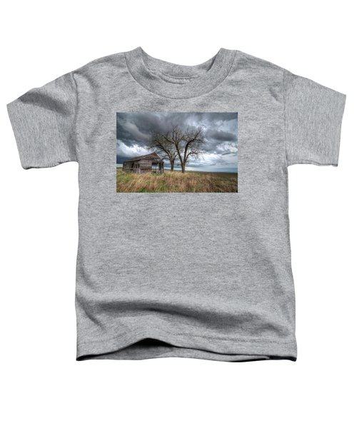 Storm Sky Barn Toddler T-Shirt
