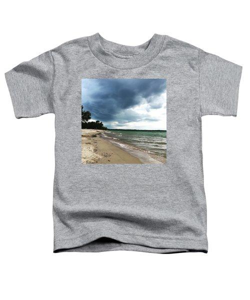 Storms Toddler T-Shirt