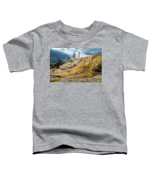 Stormy Skies At Mammoth Toddler T-Shirt
