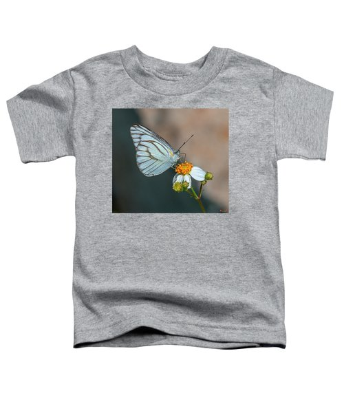 Striped Albatross Butterfly Dthn0209 Toddler T-Shirt
