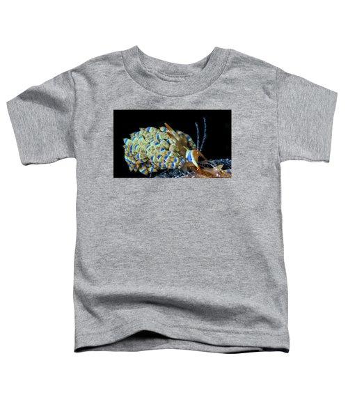 Stripes Of Color Toddler T-Shirt