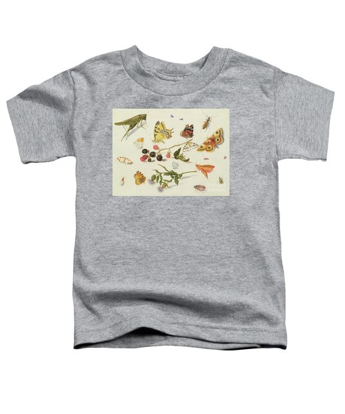 Study Of Insects, Flowers And Fruits, 17th Century Toddler T-Shirt