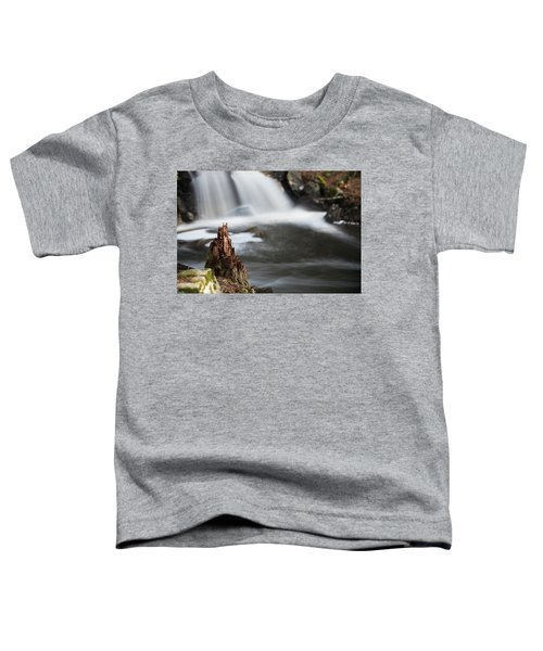 Stumped At The Secret Waterfall Toddler T-Shirt