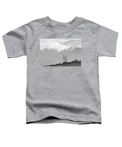 Stupa And Trees Toddler T-Shirt