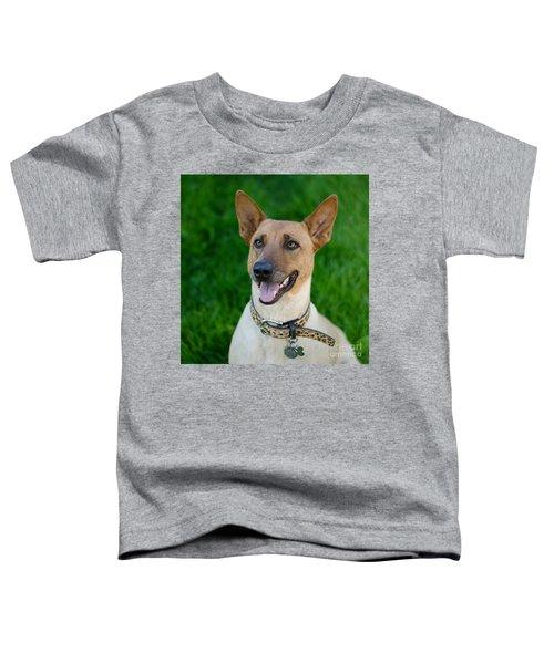 Sugar 2 Square Toddler T-Shirt