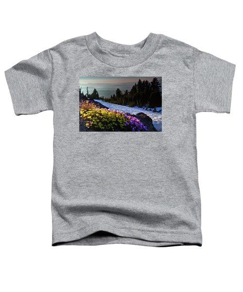 Summer And Winter Toddler T-Shirt