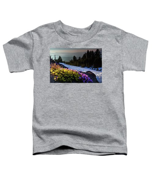 Summer And Winter Toddler T-Shirt
