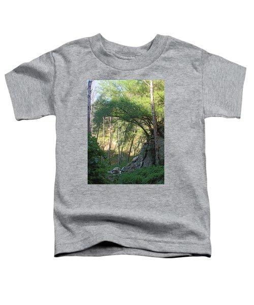 Summer On Bitten Path Toddler T-Shirt