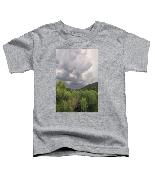 Summer Storm Toddler T-Shirt
