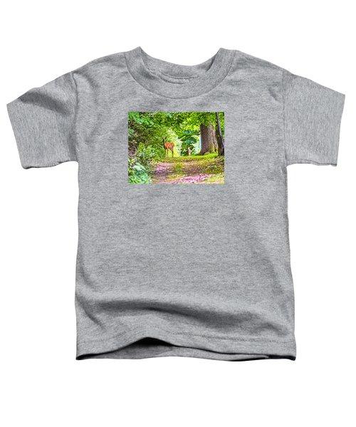 Summer Stroll Toddler T-Shirt