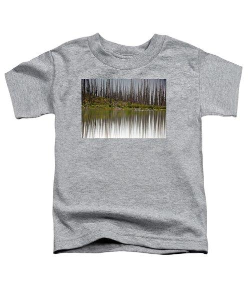 Summit Lake Toddler T-Shirt