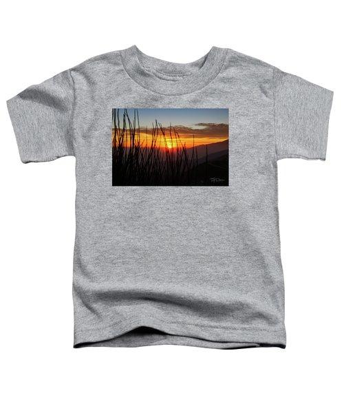 Sun Through The Blades Toddler T-Shirt