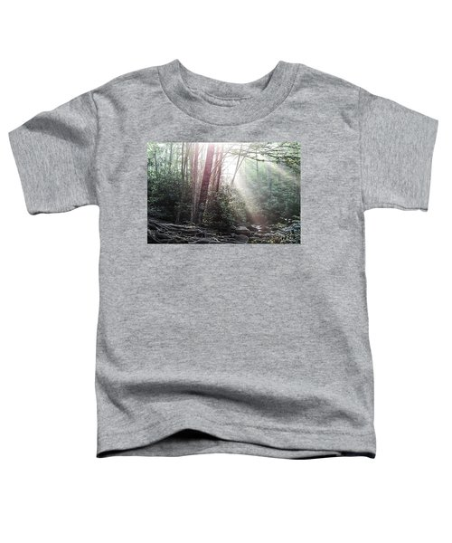 Sunbeam Streaming Into The Forest Toddler T-Shirt