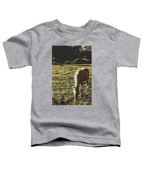 Sundown Horse Meadow Toddler T-Shirt