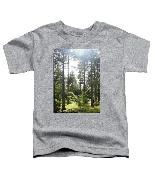 Sunlight Through The Trees Toddler T-Shirt