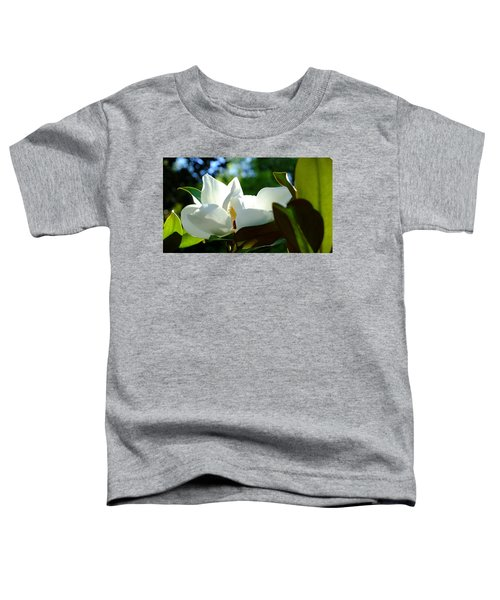 Sunlit Bloom Toddler T-Shirt