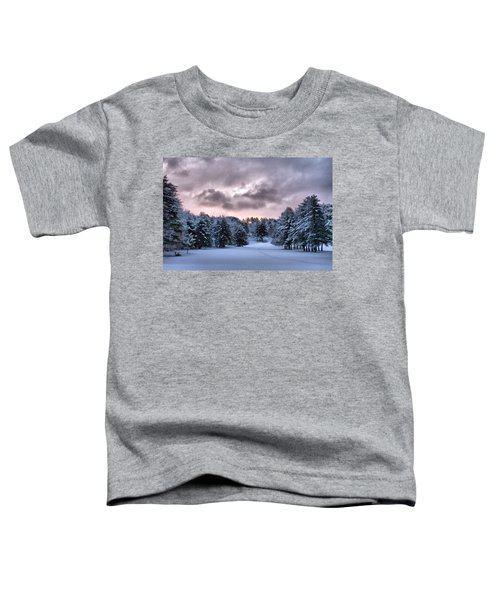 Sunrise After The Snow  Toddler T-Shirt