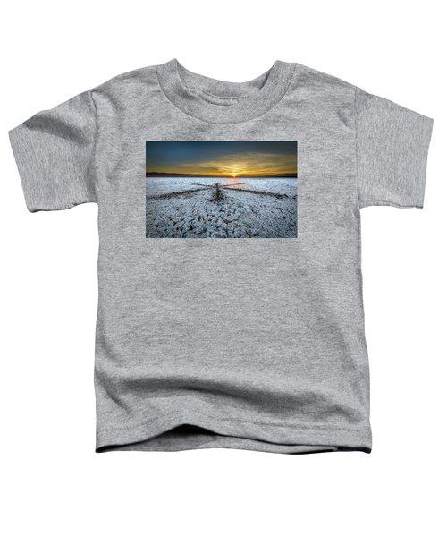 Sunrise At Soda Lake Toddler T-Shirt