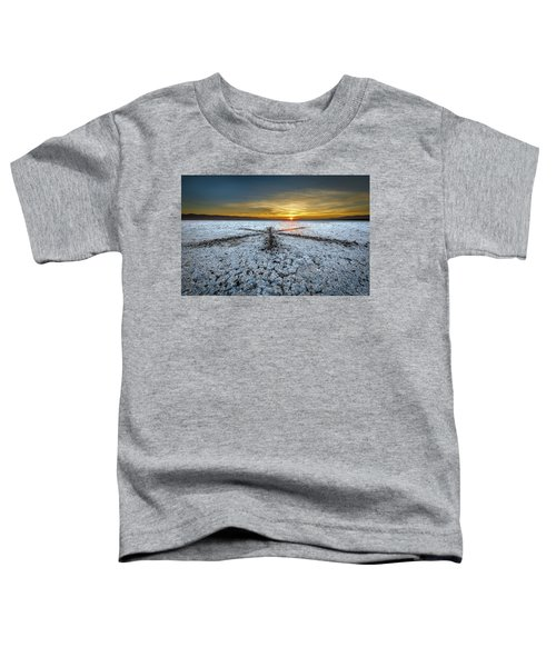 Sunrise At Soda Lake Toddler T-Shirt