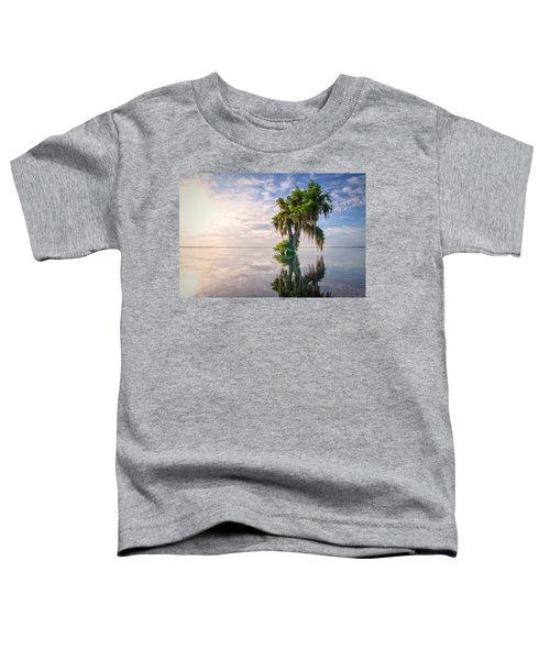 Sunrise Dip Toddler T-Shirt