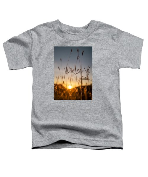 Sunset Grass Toddler T-Shirt