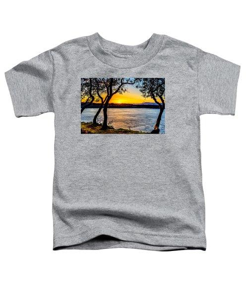 Sunset On Tacoma Narrows Toddler T-Shirt