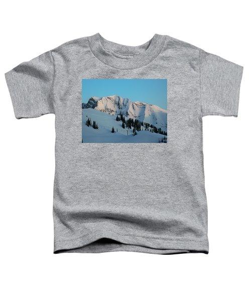 Superior Sunrise Toddler T-Shirt