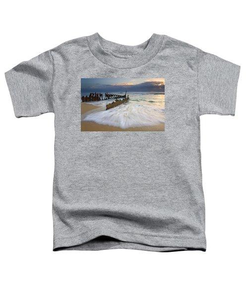 Swept Ashore Toddler T-Shirt