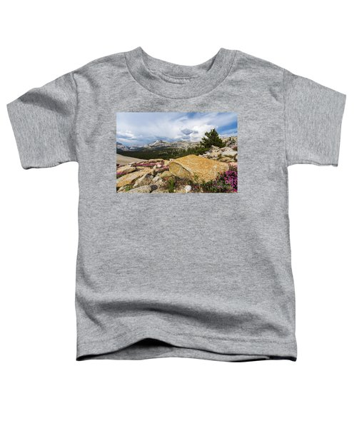 Tanya Overlook  Toddler T-Shirt