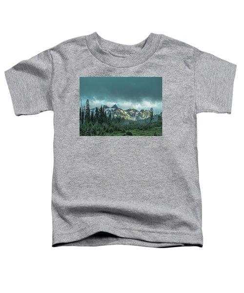 Tatoosh With Storm Clouds Toddler T-Shirt