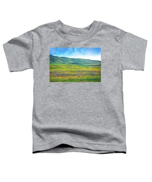 Tejon Ranch Wildflowers Toddler T-Shirt