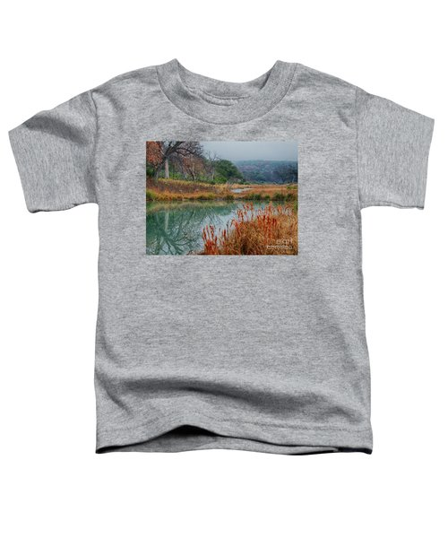 Texas Hill County Color Toddler T-Shirt