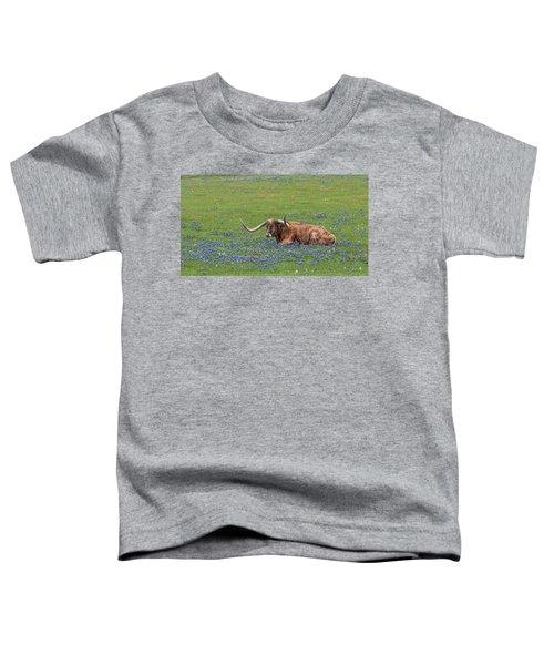 Texas Longhorn And Bluebonnets Toddler T-Shirt