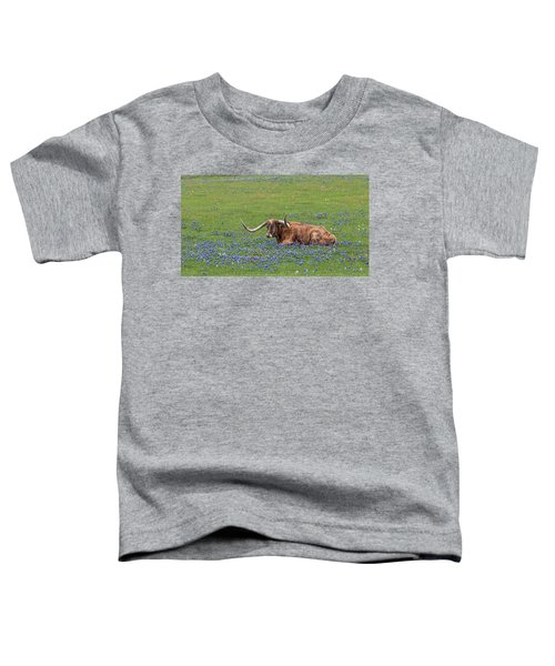 Texas Longhorn And Bluebonnets Toddler T-Shirt