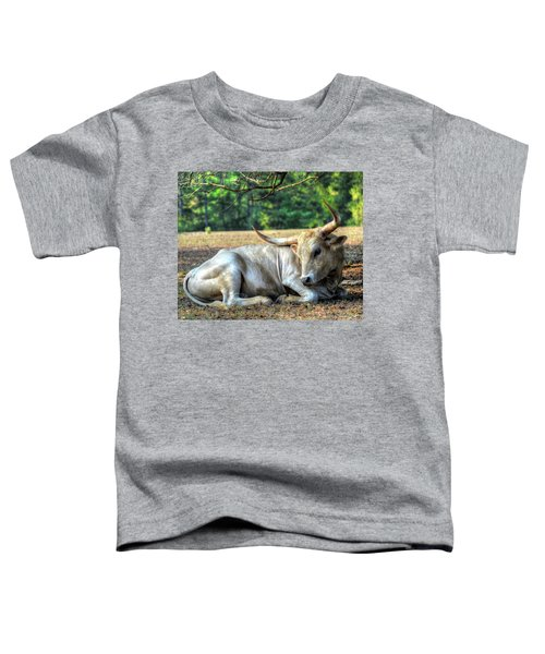 Texas Longhorn Gentle Giant Toddler T-Shirt
