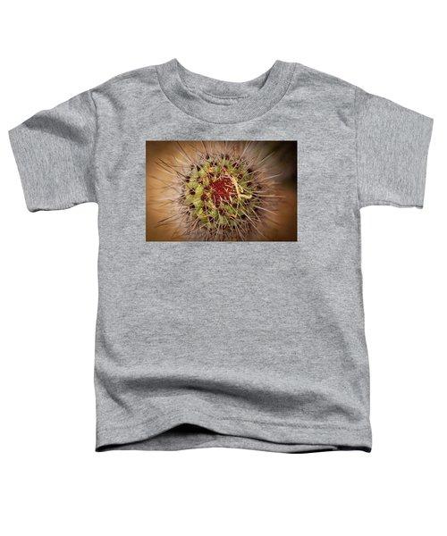 Textures Of Arizona Toddler T-Shirt
