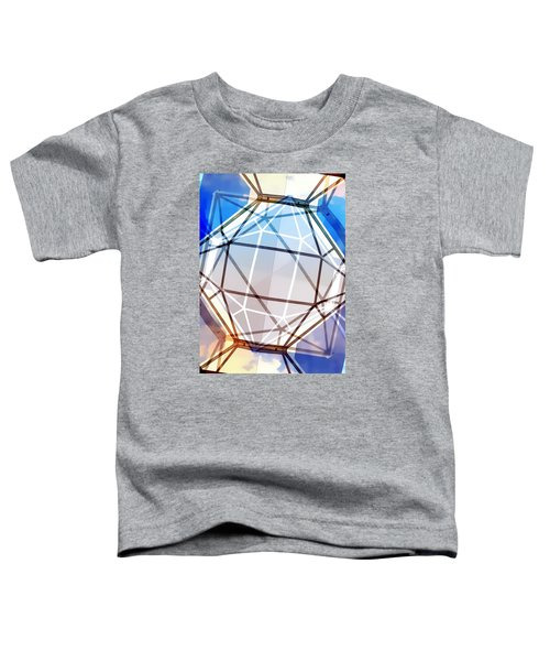 The Age Toddler T-Shirt