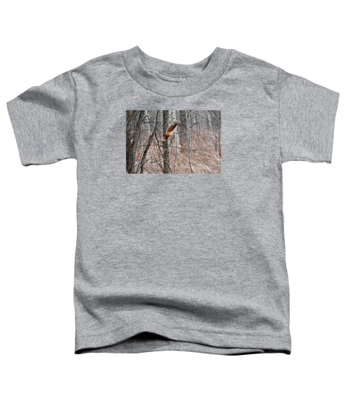 The American Woodcock In-flight Toddler T-Shirt by Asbed Iskedjian