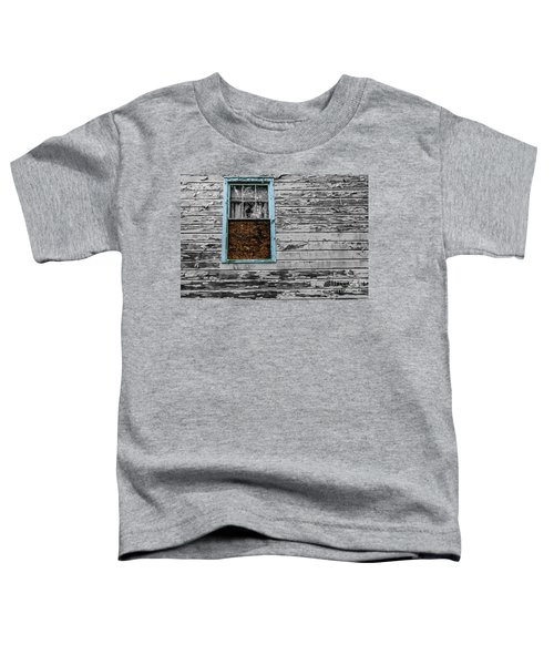 The Blue Window Toddler T-Shirt