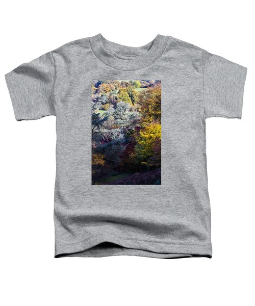 The Colours Of Autumn Toddler T-Shirt