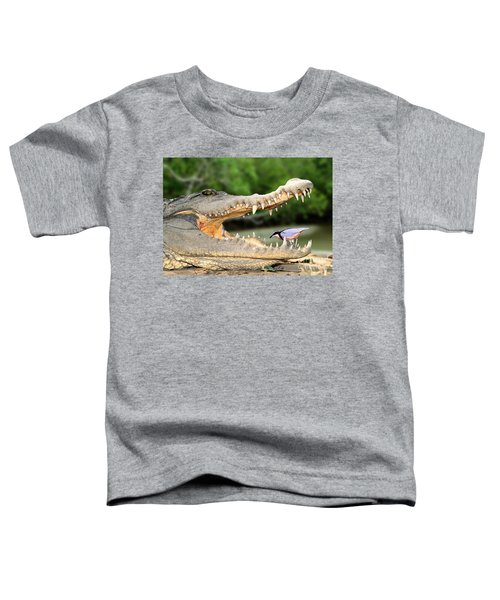 The Crocodile Bird Toddler T-Shirt
