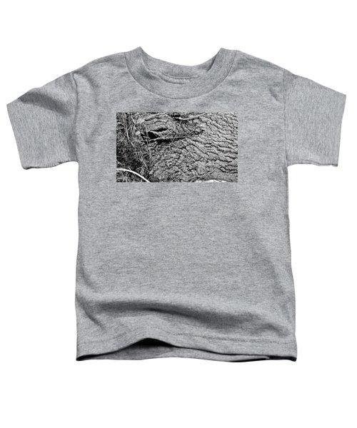 The Fallen - Dragon Eye Toddler T-Shirt
