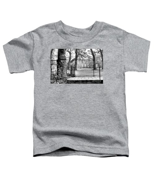 The Gates Of The Old Sheldon Church Toddler T-Shirt