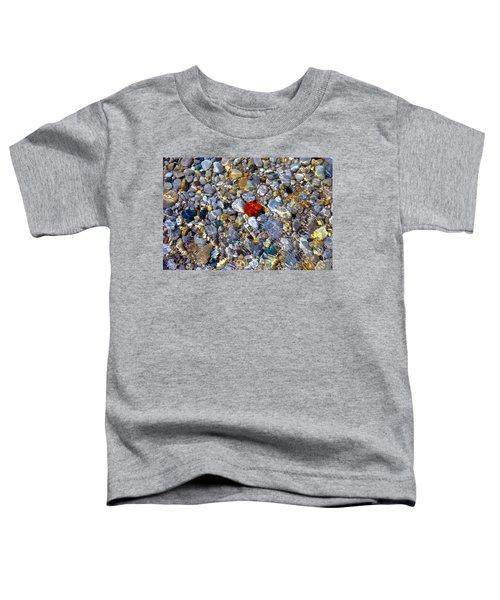 The Heart Of Lake Michigan Toddler T-Shirt