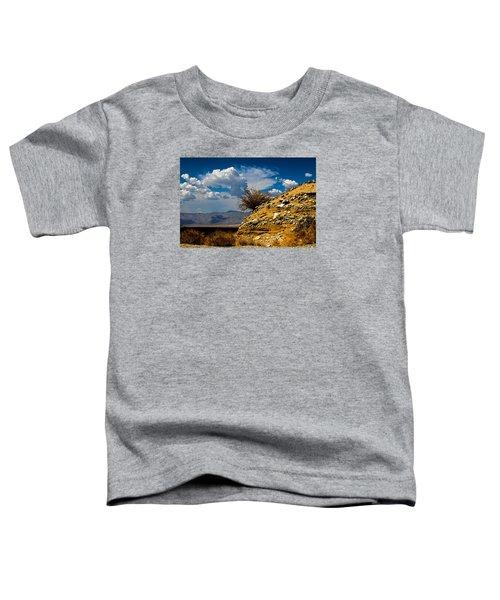 The Hilltop Toddler T-Shirt