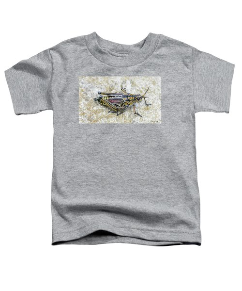 The Hopper Grasshopper Art Toddler T-Shirt by Reid Callaway