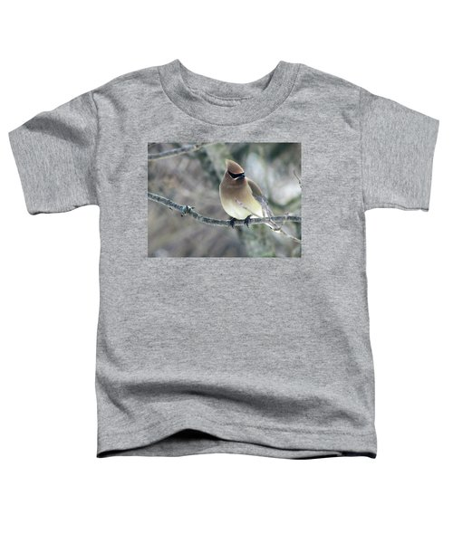 The Masked Cedar Waxwing Toddler T-Shirt