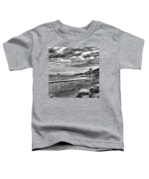 The Mewstone, Wembury Bay, Devon #view Toddler T-Shirt